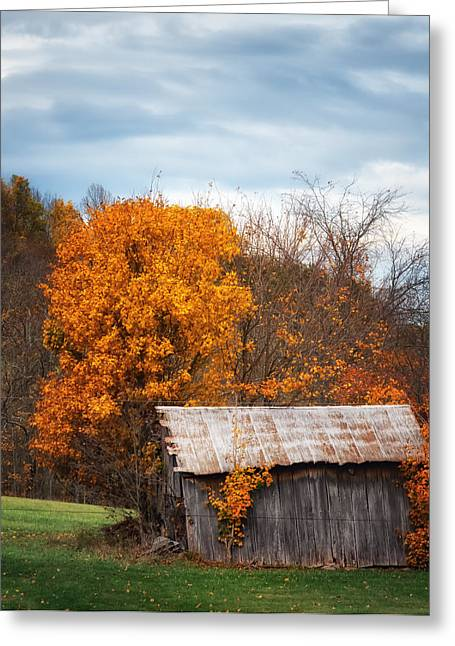 The Old Shed In Fall Greeting Card
