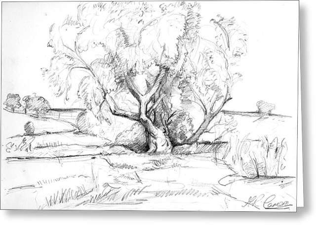 The Old Willow Tree Greeting Card