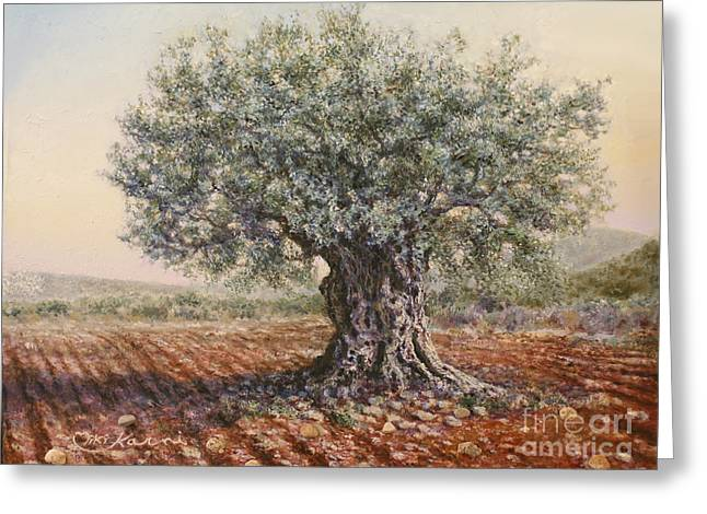 The Olive Tree In The Valley Greeting Card