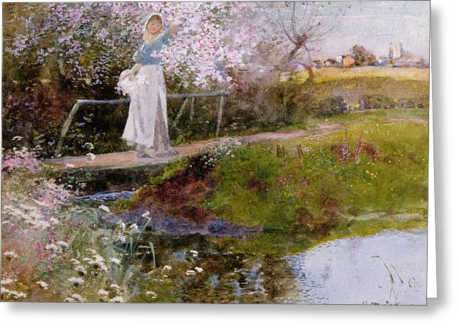 The Orchard Brook  Greeting Card by Thomas Mackay
