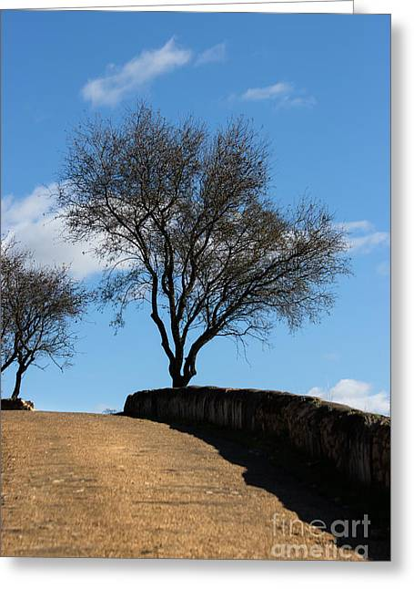 The Other Side Of The Wall Greeting Card by Edgar Laureano