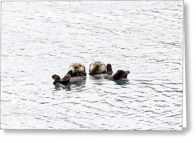 The Otters Say Hello Greeting Card by Saya Studios