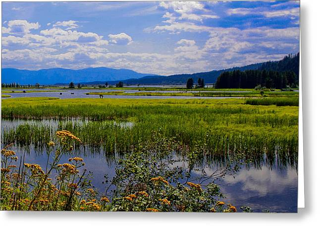 The Pack River - Hope Idaho Greeting Card