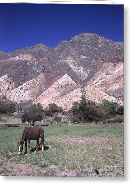 The Painters Palette Jujuy Argentina Greeting Card by James Brunker