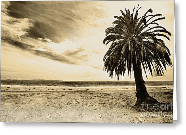 The Palm Swayed As The Storm On The Ocean Blew In Greeting Card