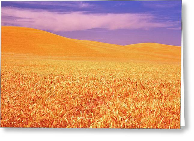 The Palouse Steptoe Butte Greeting Card