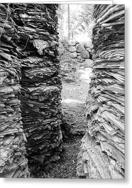 The Paper Crevasse Monochrome Greeting Card