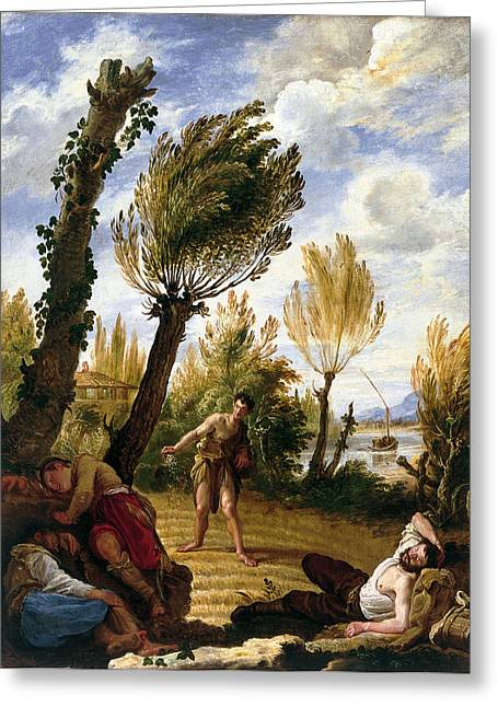 The Parable Of The Weeds Greeting Card by Domenico Fetti