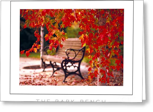 The Park Bench Poster Greeting Card