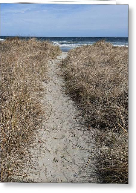 The Path Greeting Card by Glenn DiPaola