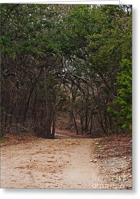The Path In The Woods Greeting Card by Lisa Holmgreen