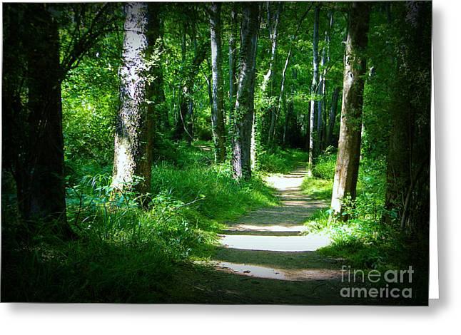 The Path Greeting Card by Lorraine Heath