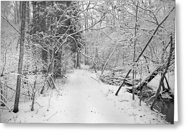 The Path Not Taken Greeting Card by Betsy Knapp