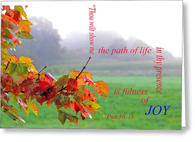 Greeting Card featuring the photograph The Path Of Life by Paul Miller