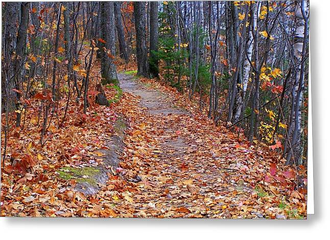 The Path On The Ridge Greeting Card