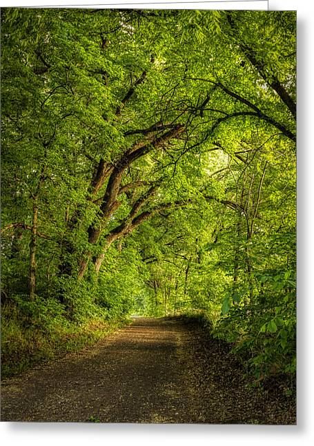The Path To Wildcat Park Greeting Card