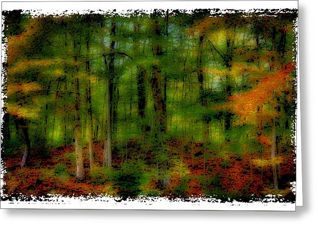 The Peak Color Of Autumn Greeting Card by David Patterson
