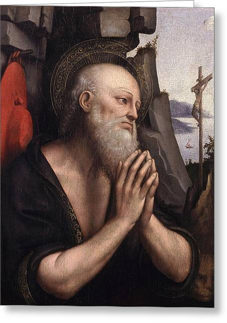 The Penitent St. Jerome Oil On Panel Greeting Card by Giovanni Pedrini Giampietrino