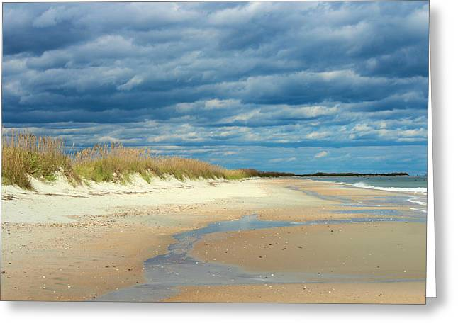 The Perfect Beach Shot Greeting Card by Lisa Campbell