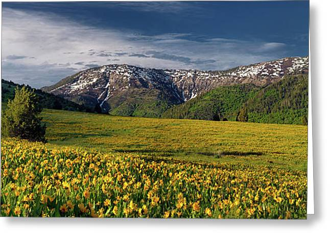 The Perfect Mountain Meadow Greeting Card by Leland D Howard