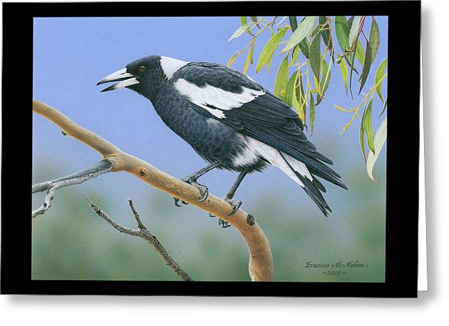 The Pied Piper - Australian Magpie Greeting Card