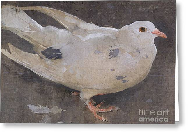 The Pigeon Greeting Card by Joseph Crawhall