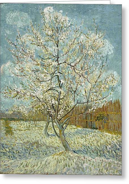 The Pink Peach Tree Greeting Card by Vincent van Gogh