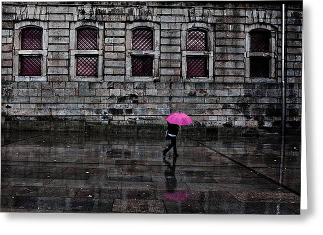 City Rain Greeting Cards - The pink umbrella Greeting Card by Jorge Maia