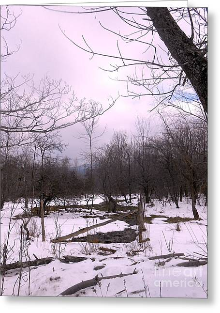 The Pink Winter Light On The Mountain Top Greeting Card by Patricia Keller