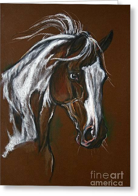 The Pinto Horse Greeting Card by Angel  Tarantella