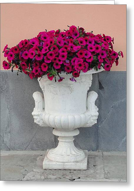 Greeting Card featuring the photograph The Planter by Natalie Ortiz