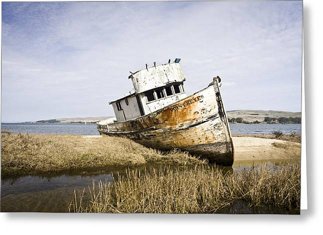 The Point Reyes Greeting Card by Priya Ghose