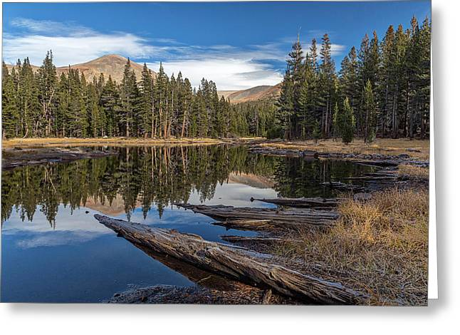 The Pond At Dana Meadow Greeting Card by Peter Tellone