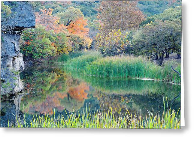 The Pond At Lost Maples State Natural Area - Texas Hill Country Greeting Card