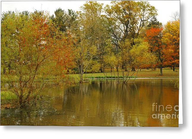 The Pond At Pidcock Creek Road Greeting Card by Addie Hocynec