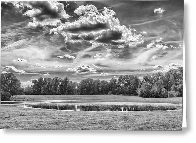 Greeting Card featuring the photograph The Pond by Howard Salmon