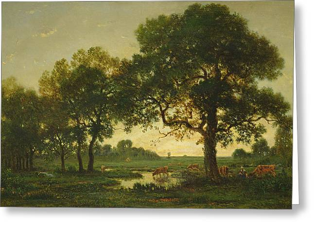 The Pond Oaks Greeting Card by Theodore Rousseau