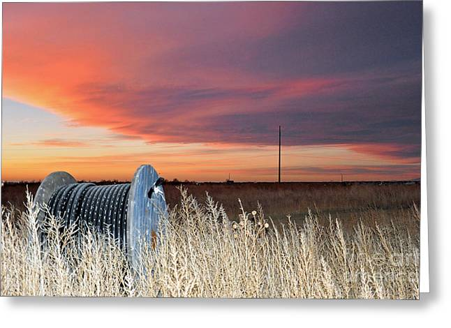 Greeting Card featuring the photograph The Prairie by Minnie Lippiatt