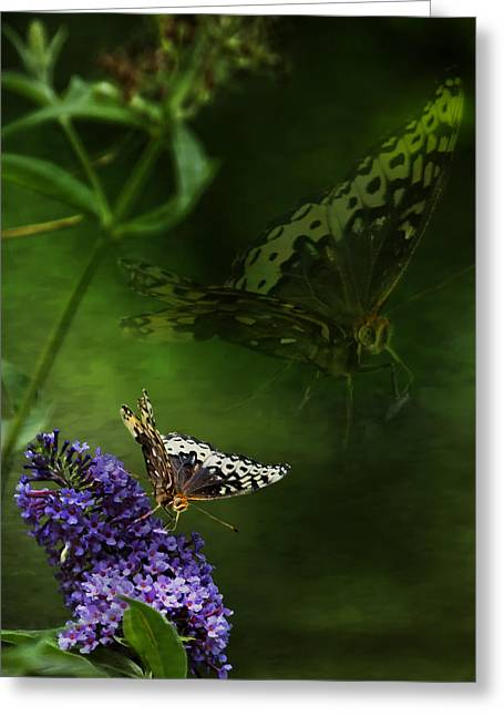 The Psyche Greeting Card by Belinda Greb