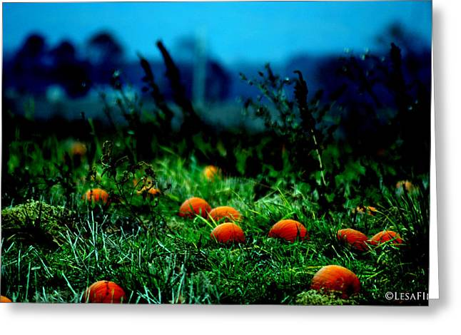 Greeting Card featuring the photograph The Pumpkin Patch by Lesa Fine