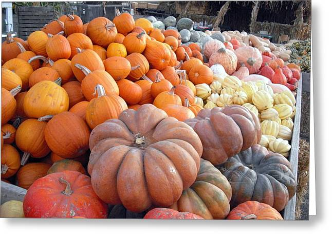 Greeting Card featuring the photograph The Pumpkin Stand by Richard Reeve