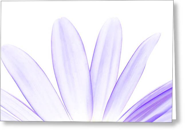 The Purple In Your Soul Greeting Card