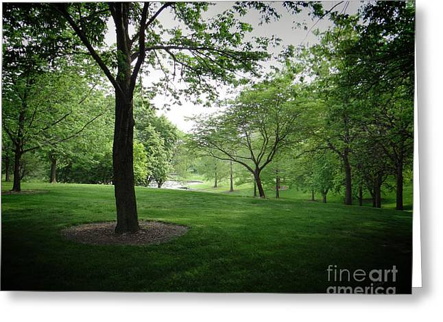 The Quiet Park Greeting Card by Bedros Awak