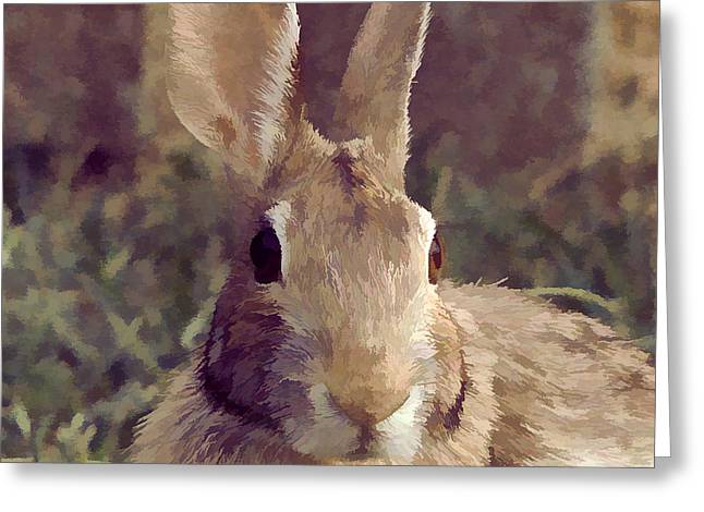 The Rabbit Greeting Card