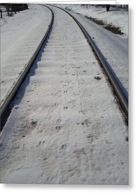 The Railroad Tracks Greeting Card by Jenna Mengersen