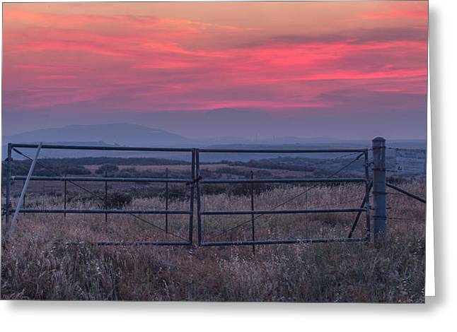 The Ranch Greeting Card by Peter Tellone