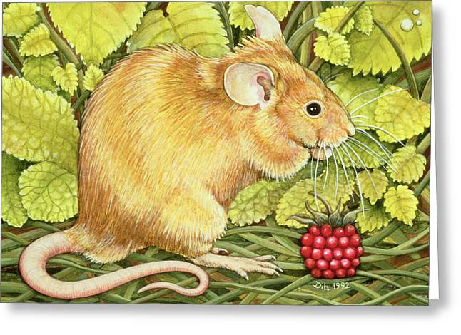 The Raspberry Mouse Greeting Card by Ditz