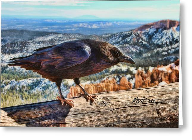 The Raven Greeting Card by Marti Green
