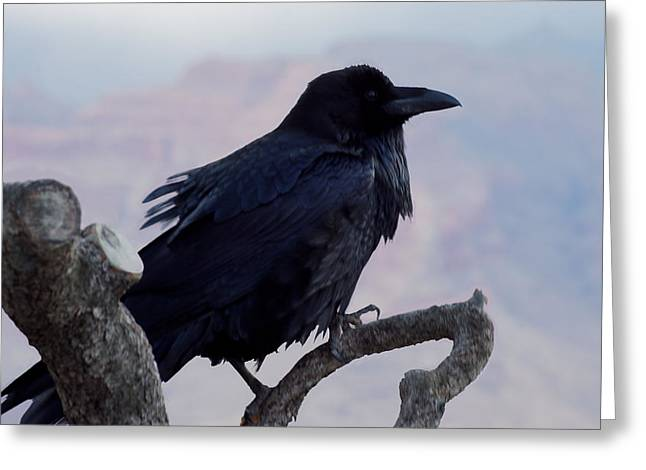 The Raven's Perch Greeting Card by Lorenzo Williams