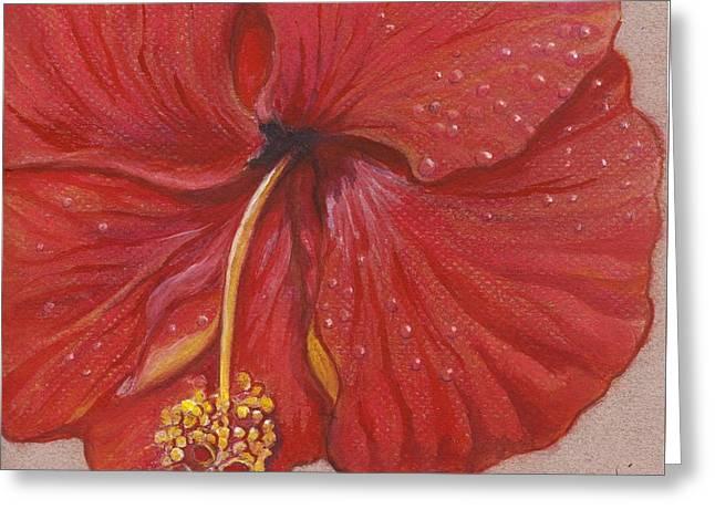 The Red Hibiscus In Dew Time Greeting Card by Carol Wisniewski